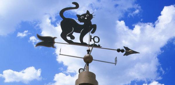 Флюгер-кот