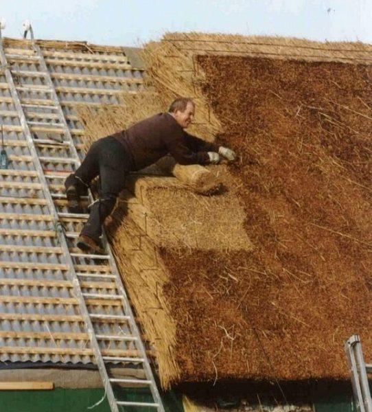 Подбивание и выравнивание камышового покрытия