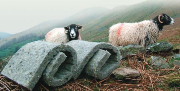 Утеплитель из овечьей шерсти